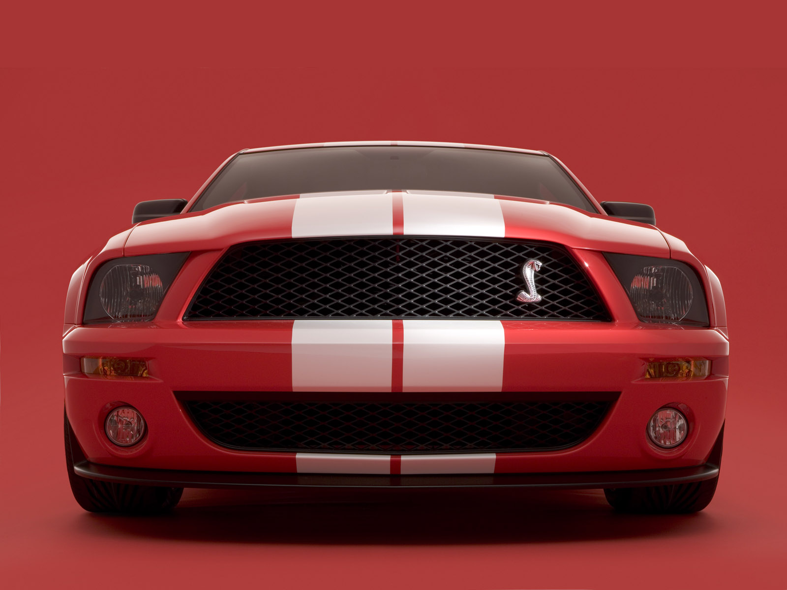 vente de shelby mustang shelby en stock. Black Bedroom Furniture Sets. Home Design Ideas